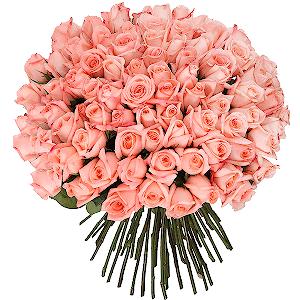 Купить цветы в краснодаре с доставкой